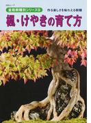楓・けやきの育て方 作る楽しさを味わえる樹種 (KBムック 盆栽樹種別シリーズ)
