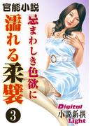 【官能小説】忌まわしき色欲に濡れる柔襞3(Digital小説新撰Light)