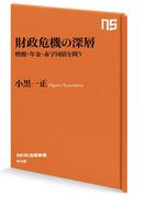 財政危機の深層 増税・年金・赤字国債を問う(NHK出版新書)