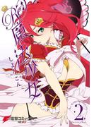 Re:魔法少女 2(電撃コミックスNEXT)