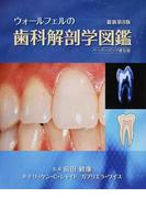 ウォールフェルの歯科解剖学図鑑 ペーパーバック普及版