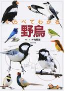 くらべてわかる野鳥 識別ポイントで見分ける