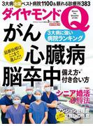 ダイヤモンドQ 創刊準備3号(ダイヤモンドQ)