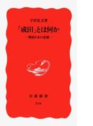 「成田」とは何か (新赤版216)