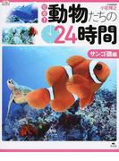 密着!動物たちの24時間 サンゴ礁編