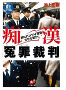 痴漢「冤罪裁判」(小学館文庫)(小学館文庫)