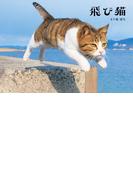 飛び猫(角川マガジンズ)