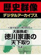 <徳川家康と戦国時代>大器晩成! 徳川家康の天下取り(歴史群像デジタルアーカイブス)