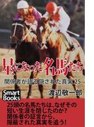 星になった名馬たち 関係者が語る隠された真実25(スマートブックス)
