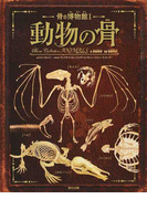 動物の骨 (骨の博物館)