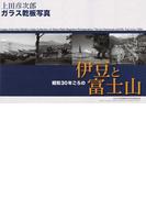 昭和30年ごろの伊豆と富士山 上田彦次郎ガラス乾板写真