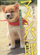 幼獣マメシバ マメシバ一郎 一郎と二郎の奇妙な生活(竹書房文庫)