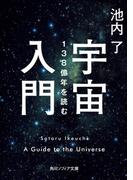 宇宙入門 138億年を読む(角川ソフィア文庫)