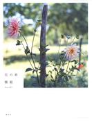 【期間限定価格】花の本(集英社女性誌eBOOKS)
