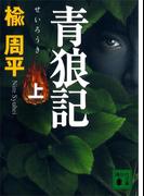 青狼記(上)(講談社文庫)