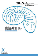 感情教育(上)(光文社古典新訳文庫)