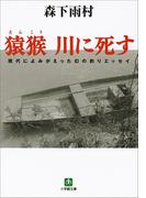 猿猴 川に死す(小学館文庫)