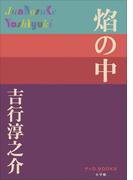 P+D BOOKS 焔の中(P+D BOOKS)