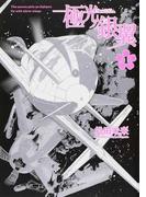 極光ノ銀翼 1 (画楽コミックス 愛蔵版コミックス)