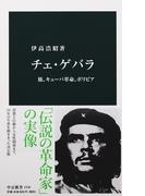 チェ・ゲバラ 旅、キューバ革命、ボリビア