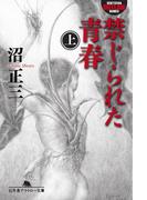 禁じられた青春(上)(幻冬舎アウトロー文庫)