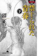 禁じられた青春(下)(幻冬舎アウトロー文庫)