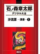 【セット限定商品】沙流譚 ―漢書―(1)