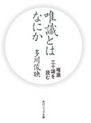 唯識とはなにか 唯識三十頌を読む(角川ソフィア文庫)