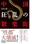 中国 狂乱の「歓楽街」(中経出版)