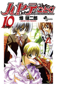 ハヤテのごとく! 10(少年サンデーコミックス)