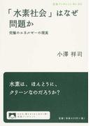 「水素社会」はなぜ問題か 究極のエネルギーの現実 (岩波ブックレット)(岩波ブックレット)