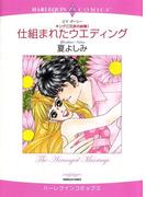 兄弟ヒーローセット vol.2(ハーレクインコミックス)