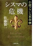 【6-10セット】小説フランス革命(集英社文庫)