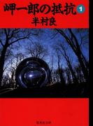 【全1-3セット】岬一郎の抵抗(集英社文庫)