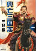 【全1-5セット】興亡三国志(集英社文庫)