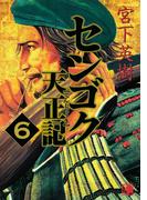 【6-10セット】センゴク天正記