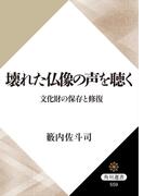 壊れた仏像の声を聴く 文化財の保存と修復(角川選書)