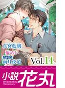 小説花丸 Vol.14(小説花丸)