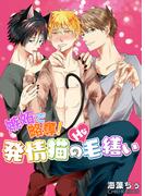【全1-2セット】嫉妬で略奪!発情猫のHな毛繕い(BL☆美少年ブック)