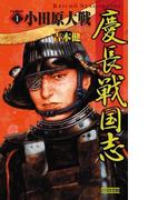 【全1-3セット】慶長戦国志(歴史群像新書)