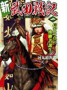 【全1-3セット】新 武田戦記(歴史群像新書)