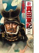 【全1-7セット】新 真田軍記(歴史群像新書)