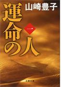 【全1-4セット】運命の人(文春文庫)