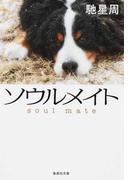 ソウルメイト (集英社文庫)(集英社文庫)