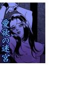 【全1-2セット】愛欲の迷宮