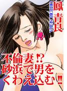 【全1-3セット】不倫妻!?砂浜で男をくわえ込む!!(アネ恋♀宣言)
