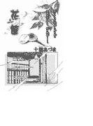【全1-2セット】花筐(恋愛惑星)