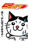 【全1-5セット】にゃまはげ仮面 ニャッパゲ(全力コミック)