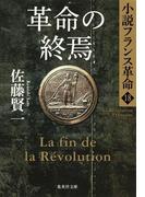 革命の終焉 小説フランス革命18(集英社文庫)
