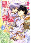 銀のセレイラ4 さらわれ姫は鷹の王に恋をする3(4)(NextF)